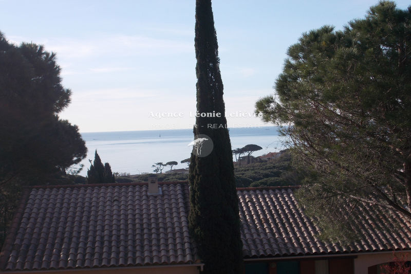 Photo Apartment Sainte-Maxime Proche plages,   to buy apartment  1 room   20 m²
