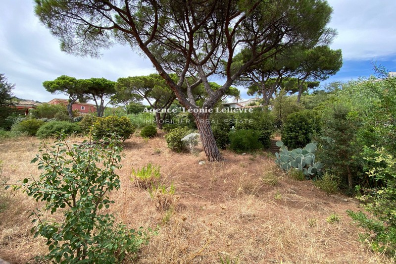 Photo Terrain Sainte-Maxime   achat terrain   1726 m²
