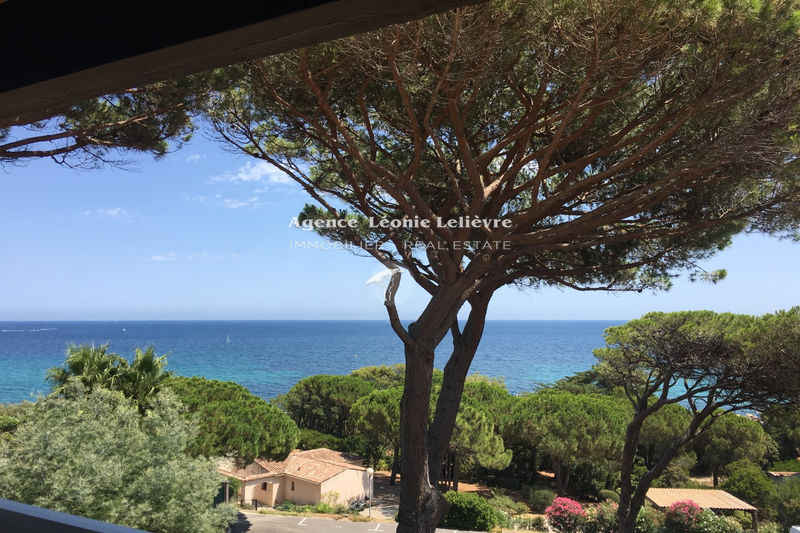 Photo Apartment Sainte-Maxime Proche plages,   to buy apartment  2 rooms   27 m²