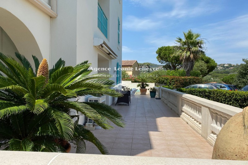 Photo n°8 - Vente appartement Sainte-Maxime 83120 - 650 000 €