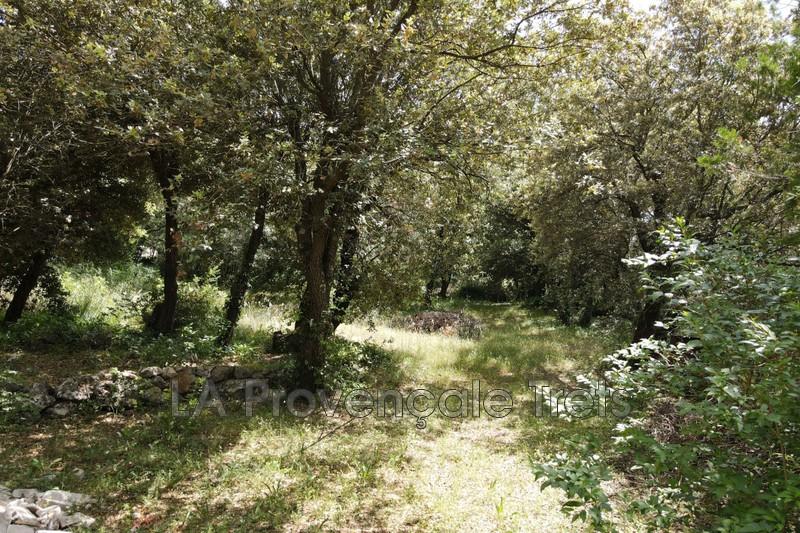 Photo n°2 - Vente terrain Saint-Maximin-la-Sainte-Baume 83470 - 245 000 €