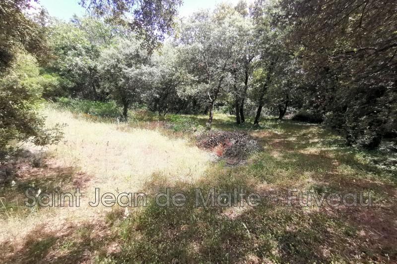Photo n°1 - Vente terrain Saint-Maximin-la-Sainte-Baume 83470 - 232 000 €