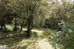 Vente terrain Saint-Maximin-la-Sainte-Baume