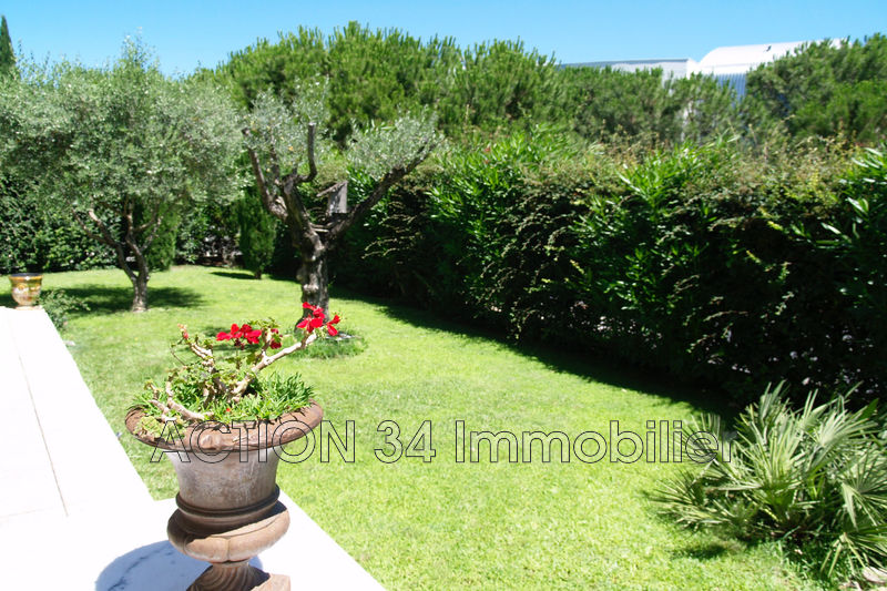 Photo Apartment Montpellier Millénaire - grammont,   to buy apartment  3 rooms   82 m²