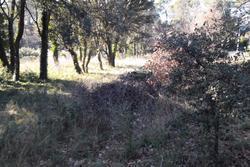 Photos  Terrain à bâtir à Vendre Mondragon 84430