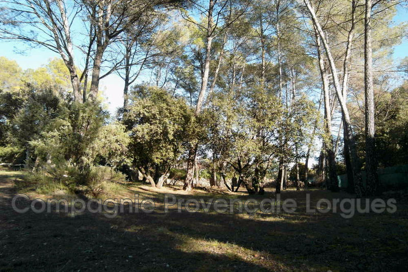 Photo n°7 - Vente Maison villa Lorgues 83510 - 450 000 €