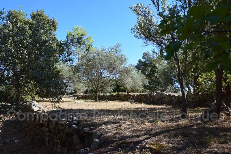 Photo n°15 - Vente Maison villa Lorgues 83510 - 270 000 €