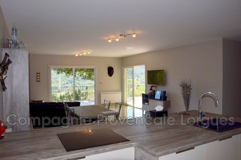 Photo n°4 - Vente Maison villa Salernes 83690 - 474 000 €