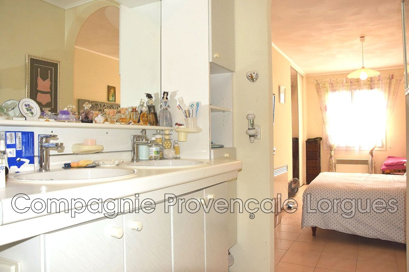 Photo n°13 - Vente maison Lorgues 83510 - 449 000 €
