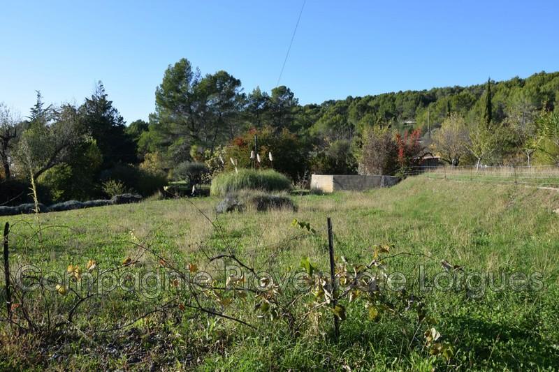 Photo n°4 - Vente terrain Salernes 83690 - 120 000 €