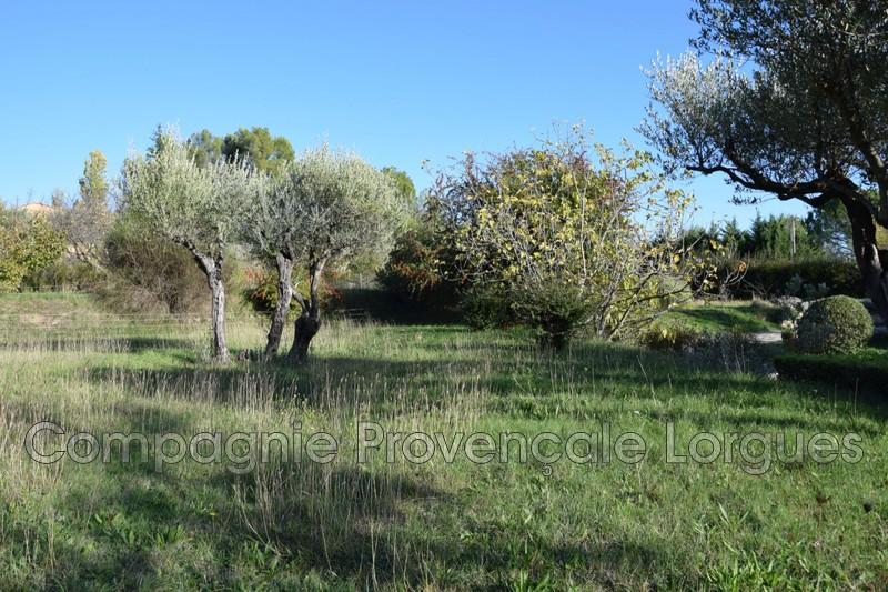 Photo n°6 - Vente terrain Salernes 83690 - 120 000 €