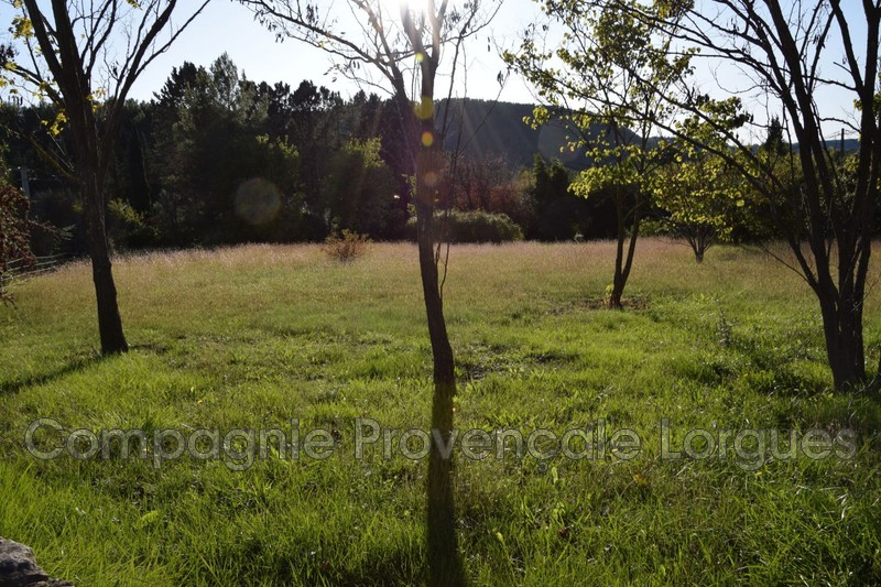 Photo n°3 - Vente terrain Salernes 83690 - 120 000 €