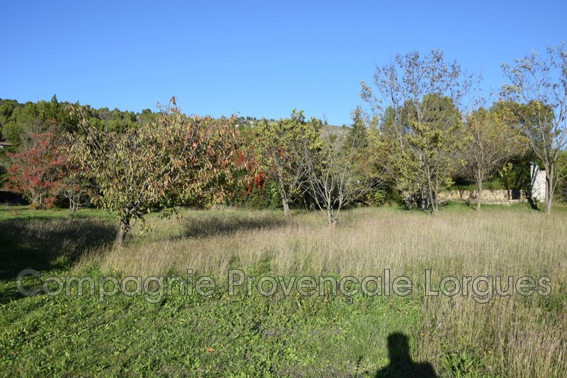 Photo n°7 - Vente terrain Salernes 83690 - 120 000 €