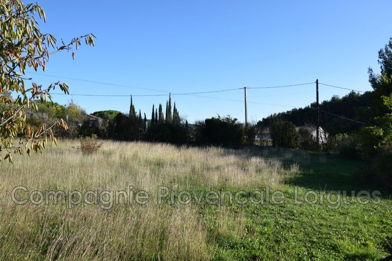 Photo n°8 - Vente terrain Salernes 83690 - 120 000 €