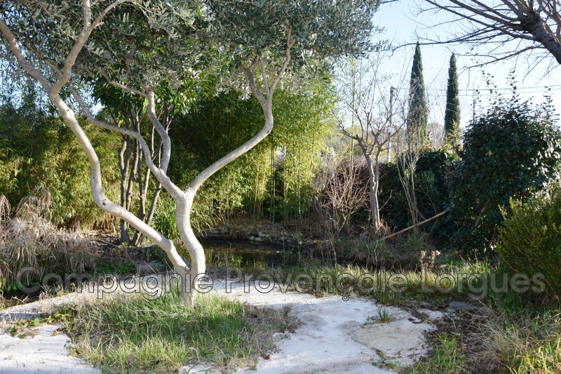 Photo n°8 - Vente terrain Saint-Antonin-du-Var 83510 - 138 300 €