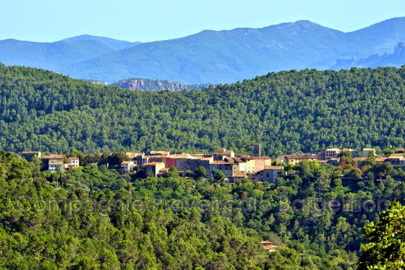 Photo n°6 - Vente Maison villa Bargemon 83830 - 650 000 €