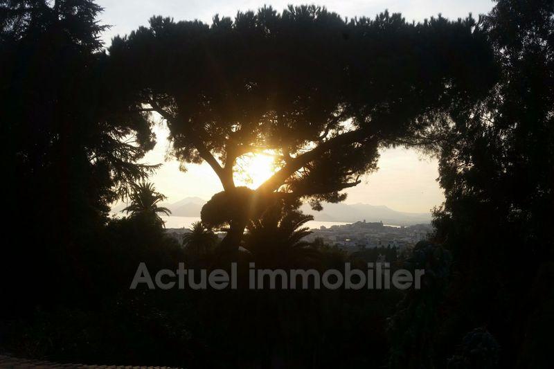 Vente château Cannes 20151114_163035_resized_2