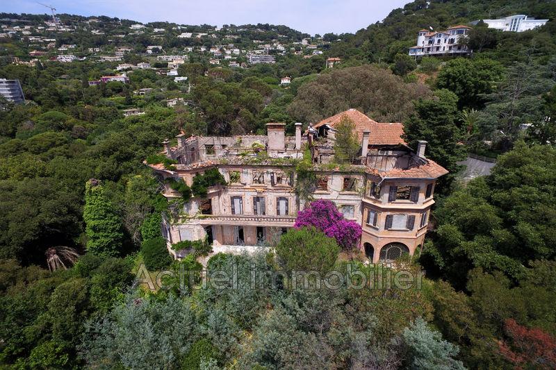 Vente château Cannes DJI_0008.JPG