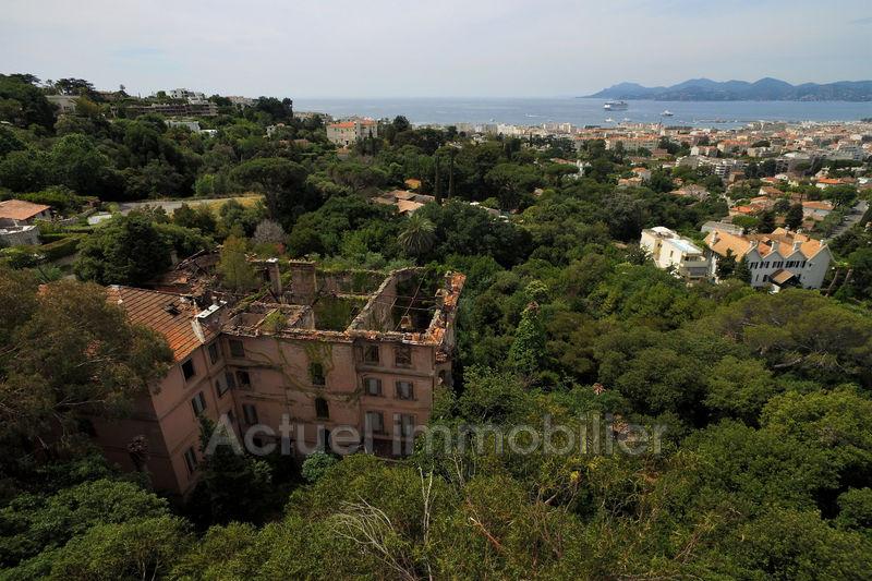 Vente château Cannes DJI_0039.JPG