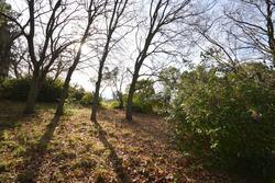 Vente terrain Aix-en-Provence DSC_0003.JPG