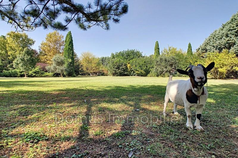 Photo Villa Saint-Saturnin-lès-Avignon   to buy villa  4 bedrooms   125m²