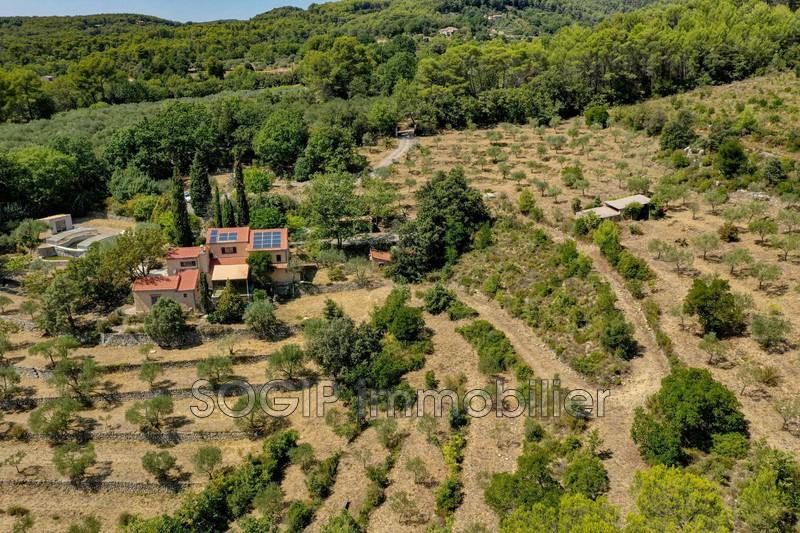 Photo n°3 - Vente Maison villa Draguignan 83300 - 750 000 €
