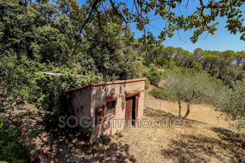 Photo n°26 - Vente Maison villa Draguignan 83300 - 750 000 €