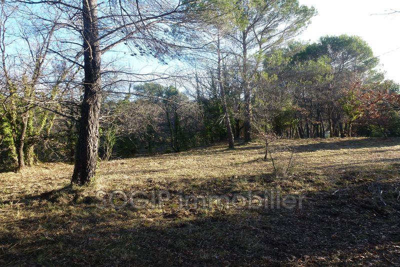 Photo n°5 - Vente terrain à bâtir Flayosc 83780 - 169 000 €