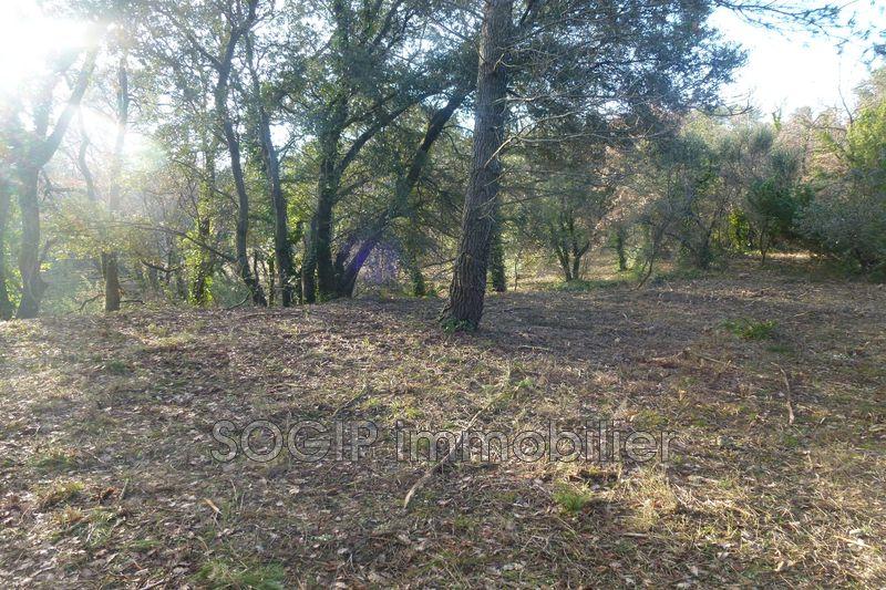 Photo n°4 - Vente terrain à bâtir Flayosc 83780 - 169 000 €