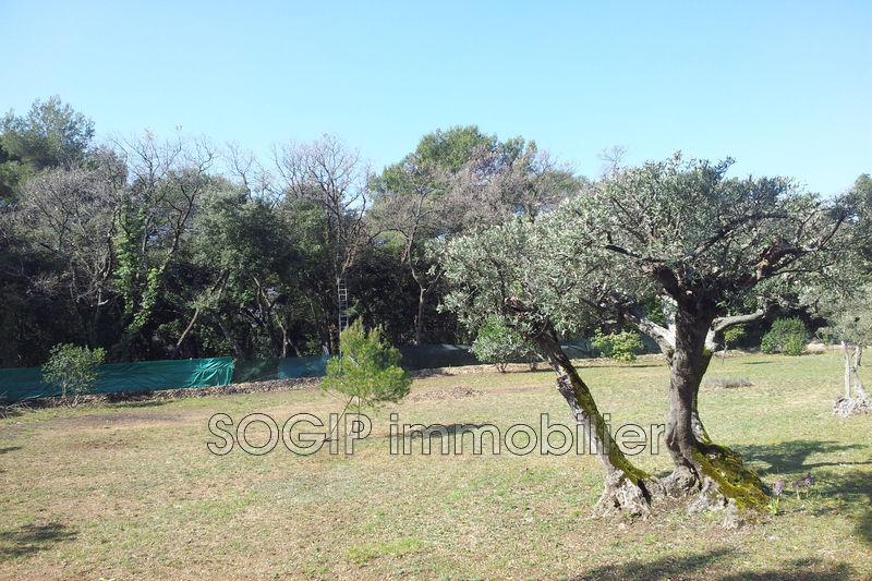 Photo n°3 - Vente terrain à bâtir Flayosc 83780 - 135 000 €