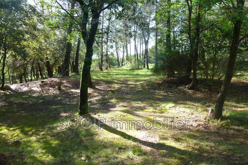 Photo n°3 - Vente terrain Flayosc 83780 - 160 000 €
