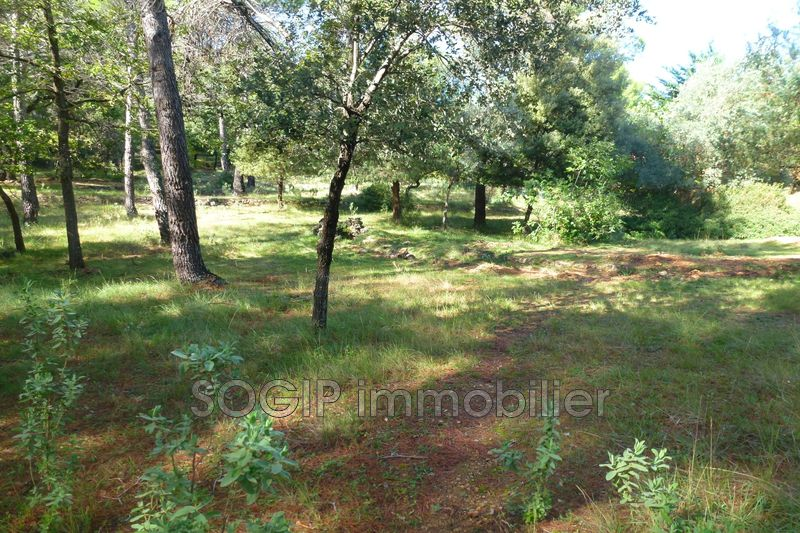 Photo n°5 - Vente terrain Flayosc 83780 - 160 000 €