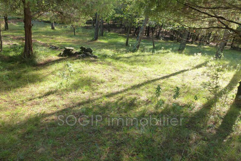 Photo n°6 - Vente terrain Flayosc 83780 - 160 000 €
