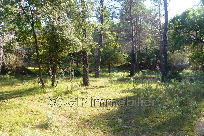 Photo n°7 - Vente terrain Flayosc 83780 - 160 000 €