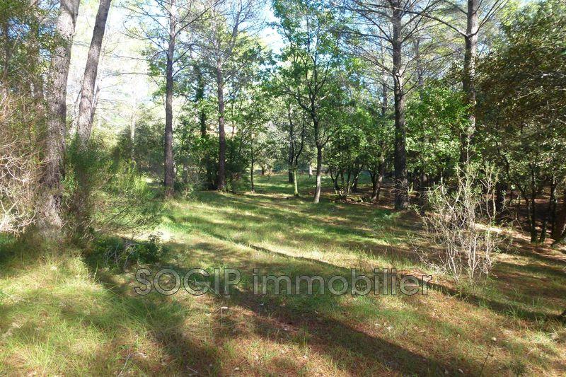 Photo n°8 - Vente terrain Flayosc 83780 - 160 000 €