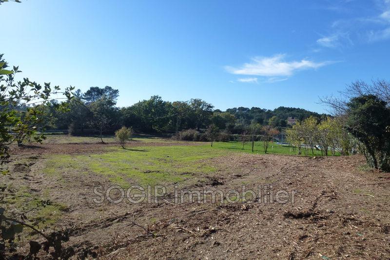 Photo n°5 - Vente terrain Flayosc 83780 - 150 000 €
