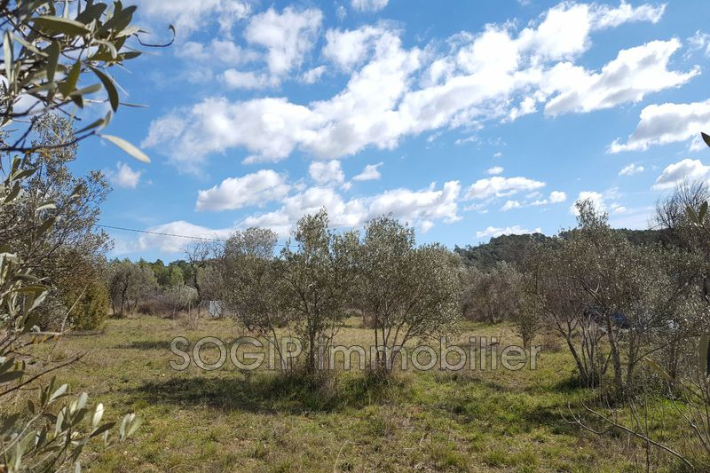 Photo Land Flayosc Campagne,   to buy land   1420 m²