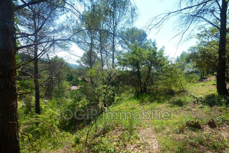 Photo n°9 - Vente terrain à bâtir Flayosc 83780 - 129 000 €