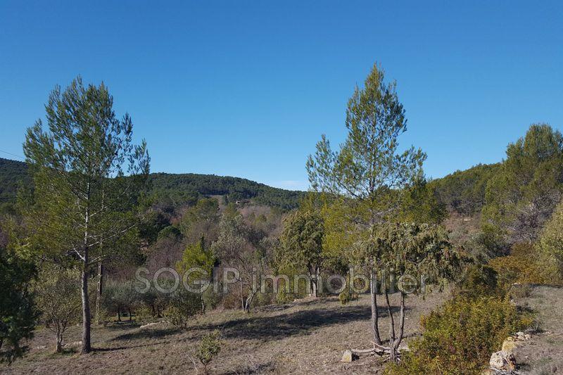 Photo Terrain Flayosc Campagne,   achat terrain   1570m²