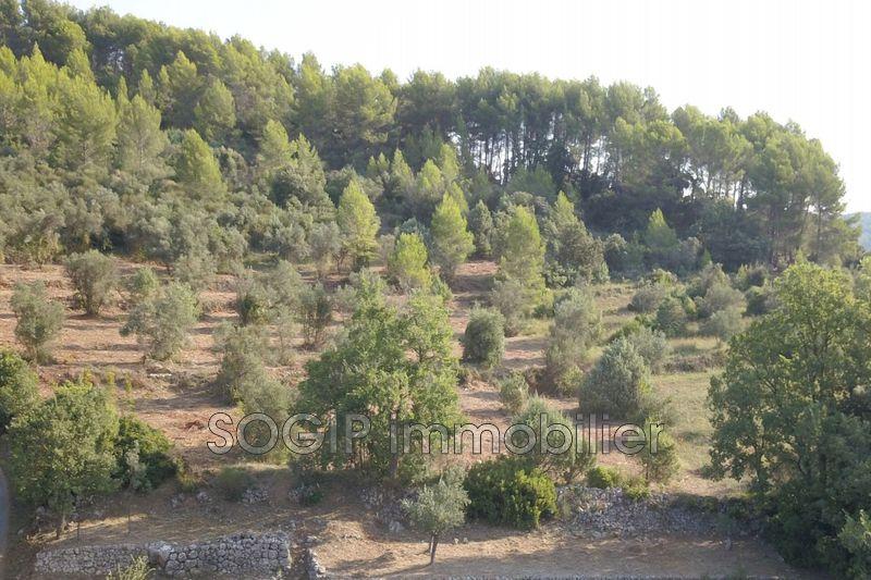 Photo Terrain Flayosc   achat terrain   6900m²