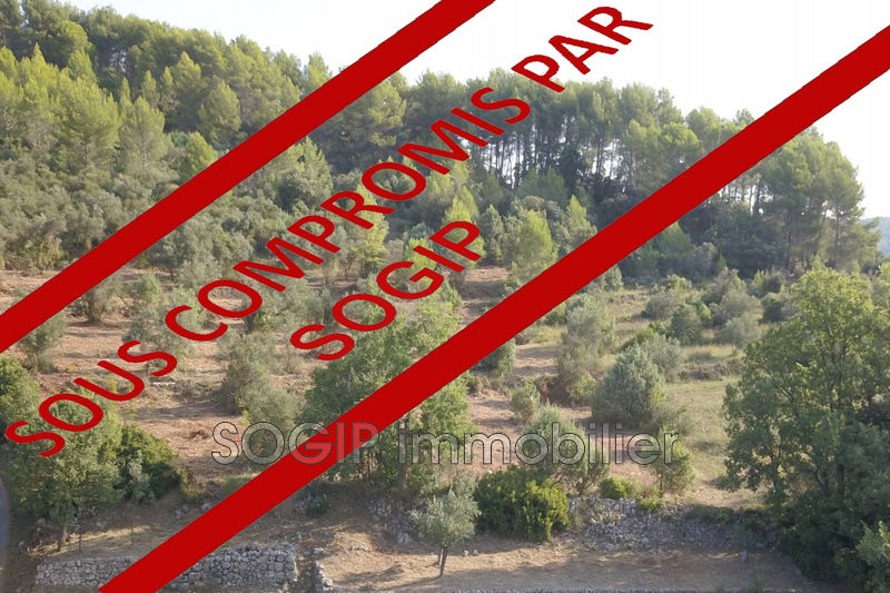 Photo Land Flayosc   to buy land   6900 m²