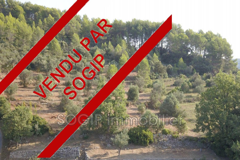 Photo n°2 - Vente terrain Flayosc 83780 - 210 000 €