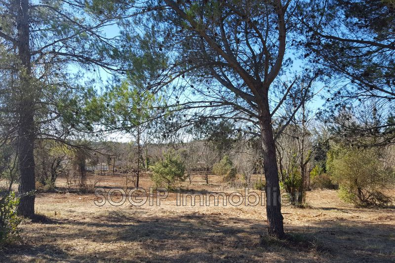 Photo Land Flayosc Campagne,   to buy land   5880 m²