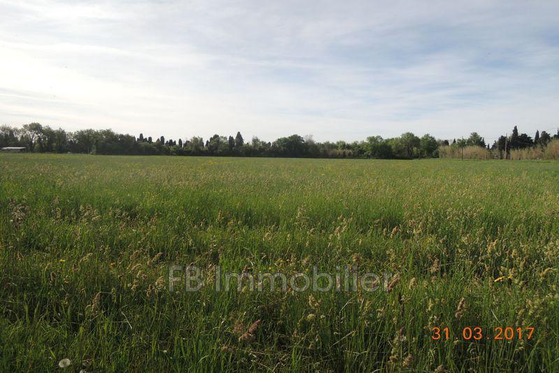 Photo n°3 - Location Maison mas Eyguières 13430 - 1 000 €