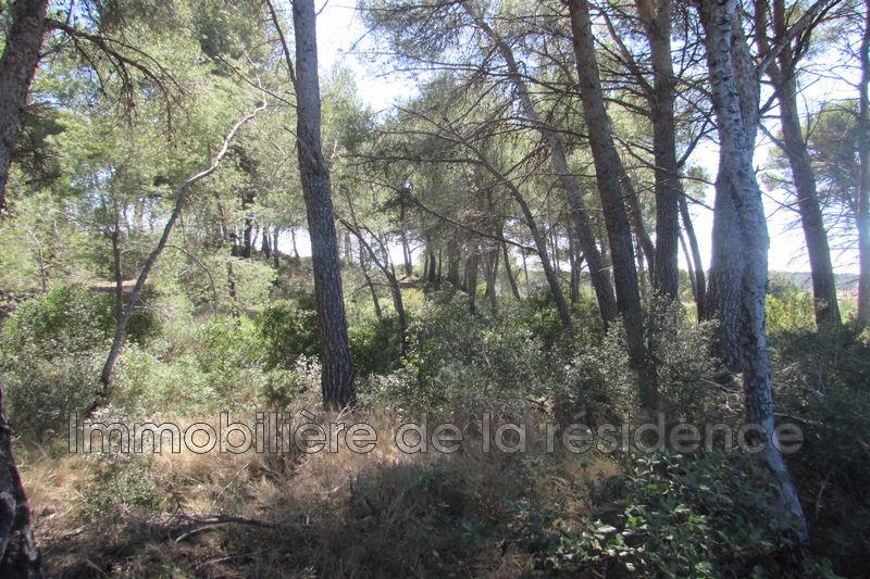 Photo Terrain non constructible Velaux Les pinettes,   achat terrain non constructible