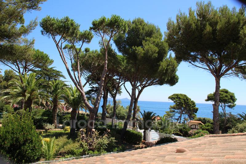 Photo n°3 - Vente Maison villa Saint-Aygulf 83370 - 1 499 000 €