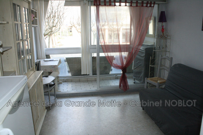 Appartement La Grande-Motte Centre ville,   achat appartement  1 pièce   18m²