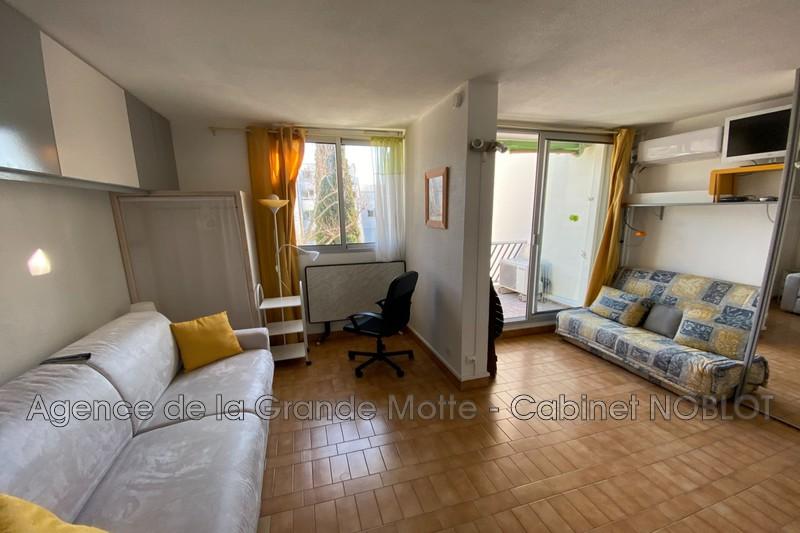 Appartement La Grande-Motte Ponant,  Location appartement  1 pièce   24m²
