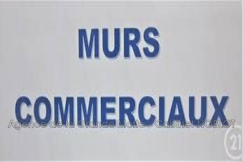 Murs local professionnel La Grande-Motte Centre ville,  Professionnel murs local professionnel   205 m²