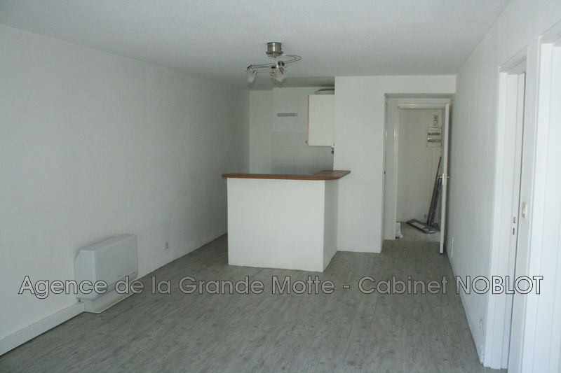 Apartment La Grande-Motte Ponant,   to buy apartment  3 rooms   54 m²